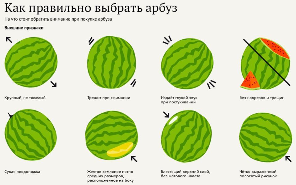 как правильно распределить питание