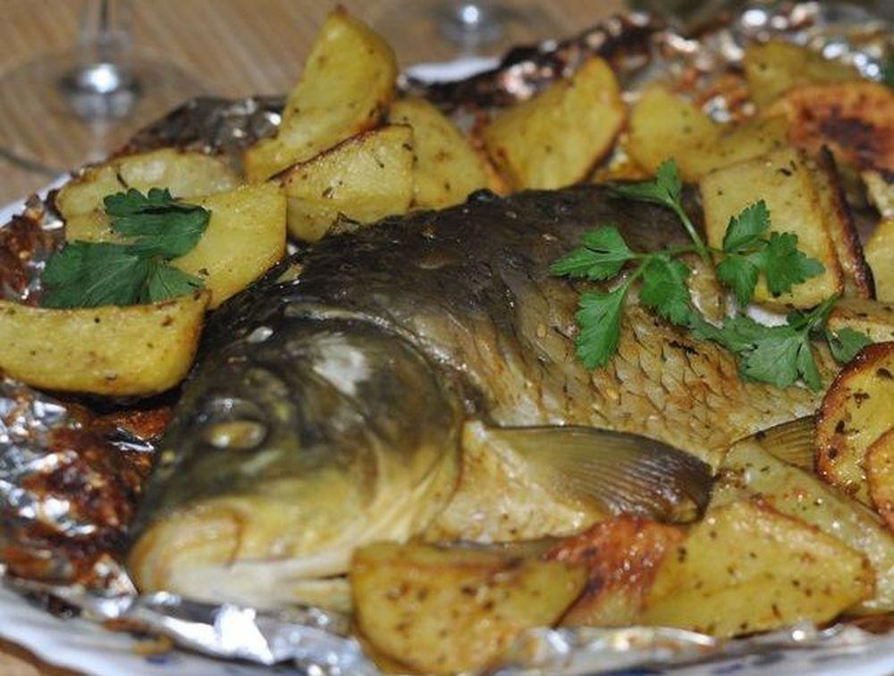 как правильно приготовить прикормку для рыбалки