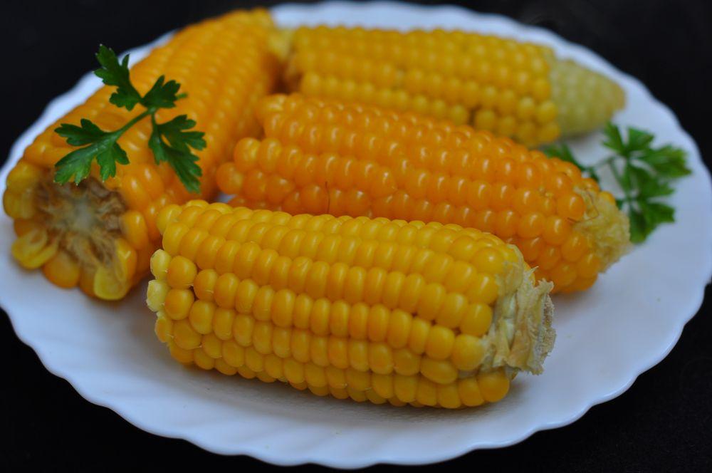 рецепты салатов с кукурузой початками