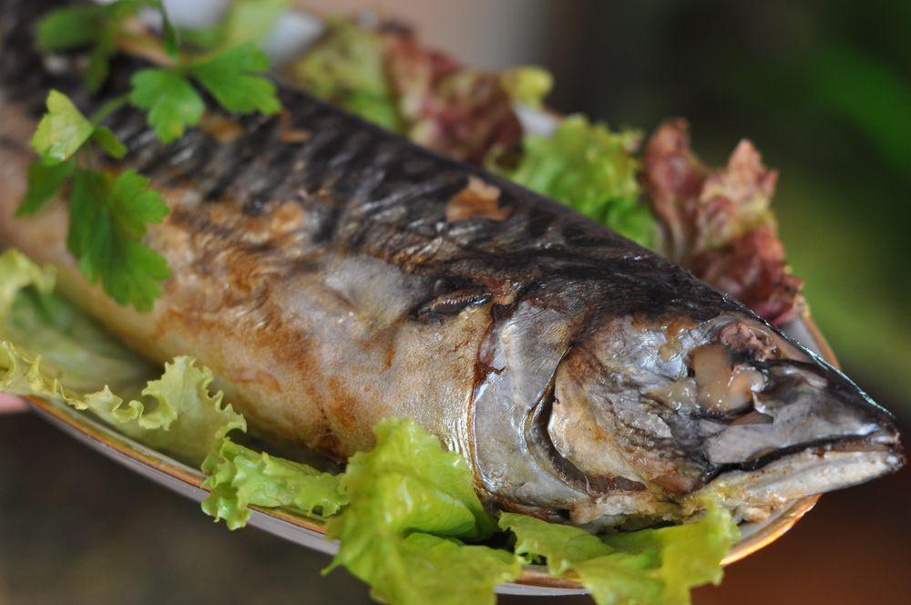 как правильно приготовить пшено для прикормки рыбы