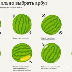 Как правильно выбирать арбуз