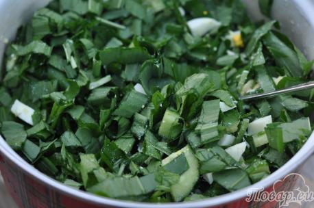 Салат из черемши с огурцом: зелень
